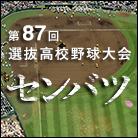 第87回選抜高等学校野球大会